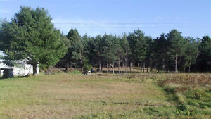 Open to Offers! Hobby Farm in Goulais-60 acres!