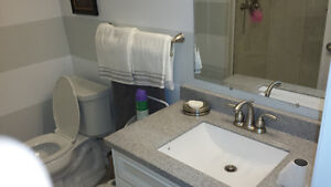 PLUMBER /RENOVATOR AVAILABLE!!! 20+ YEARS EXP!!!! London Ontario image 1