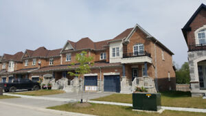 New Townhouse 3 bedrooms Innisfil South available immediately