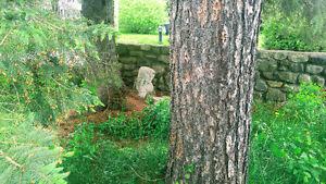 Chalet rustique centenaire rénové a louer courte periodes