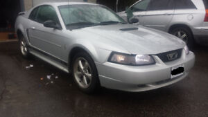 2002 Ford Mustang V6 Luxury Model SALE OR TRADE