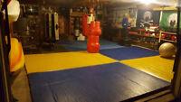 Grappling  / Jiu Jitsu / kickboxing partners or students wanted