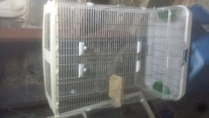 Cage for med birds -$75.00