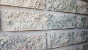 Looking for these bricks