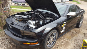 2009 Ford Mustang Coupe Procharged (2 door)