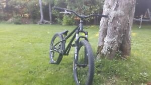 Upgaded Norco Ryde 24' Dirt Jumper/Trail bike