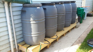 Repurposed Food Grade Rain Barrels For Sale Hamilton