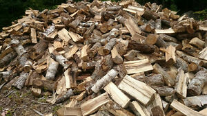 Hardwood firewood for sale $230-$250 per cord