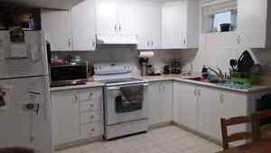 All Inclusive 1 Bedroom Basement Apartment Vaughan ( Maple)