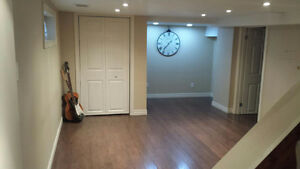 Furnished 1 Bedroom Basement Apartment for Rent