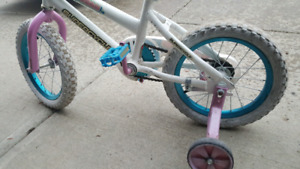 Boy Bike Girl Bike (Training Wheels included)