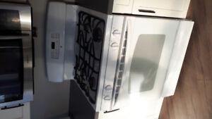 Propane stove  ( fridgedaire)