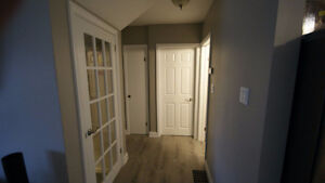 6 Bedroom Student Rental Fully Renovated with 3 Bathrooms London Ontario image 6