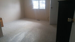 looking for rent out 2 rooms and basement