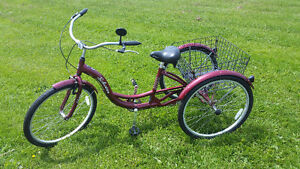 TRICYCLE EN PARFAITE CONDITION