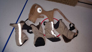small dog harness and winter boots Peterborough Peterborough Area image 1