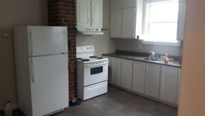beautiful clean one bedroom apt, small pet friendly