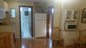 Bright and Clean Furnished Basement Suite for Rent