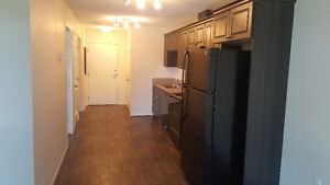 BRAND NEW APARTMENTS IN CARLYLE! FURNISHED UNITS AVAILABLE! Regina Regina Area image 4