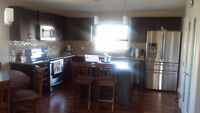 Basement Suite in West Haven Park Available Immediately