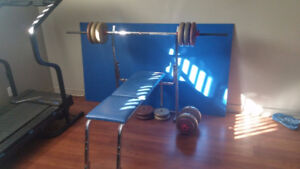 Bench press with free weights / avec des poids gratuits