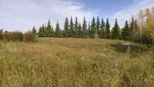 3.25 acres land  Strathcona County Edmonton Area image 2