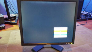 "Dell 19"" Flatscreen Monitor"