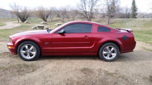 07 Mustang GT