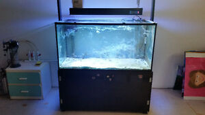 Reef aquarium set