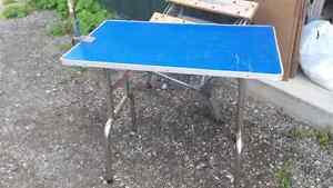 Pet grooming table / table toiletteur