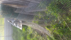 Heavy duty wire fencing