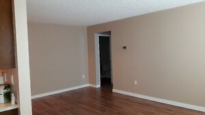 Large 1 Bedroom Condo a must see $700.00/month - Call Today
