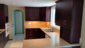 Kitchen Cabinets Jen-Air Stove top + Wall Oven & Dishwasher