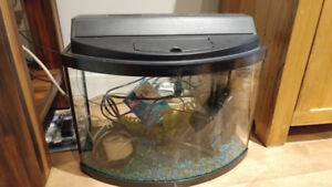6 Gallon Bow front tank with Filter, gravel, good, air pump ect