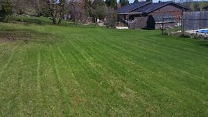 KAWARTHA CREATIONS: Lawn Care / Fall Clean Up Peterborough Peterborough Area image 3