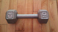 Dumbell New..10Lbs..