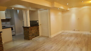 Bright and renovated basement apartment in Maple