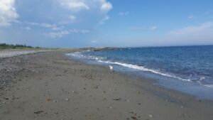 12.5 acres Ocean front and Lakefront all in one! Nova Scotia