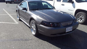 2003 Ford Mustang 5-Speed