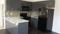 Cedarvale/Humewood Newly Renovated Spacious 1-Bed All-in $1495