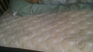 Queen bed 1 year old