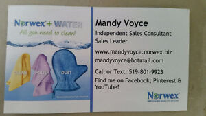 Cleaning without Chemicals - Norwex Leader Stratford Kitchener Area image 1