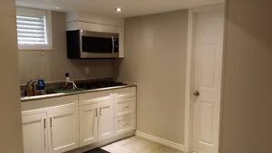1 Bedroom modern Bsmt in north end