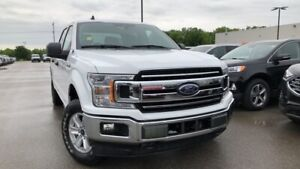 2019 Ford F-150 XLT 5.0L V8 300A