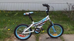 """CCM Arrow 16 """" Boys Bike $ 45.00"""