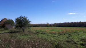 Acreage for sale in Prince Edward County