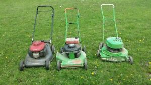 Commercial Lawn Boy Mowers