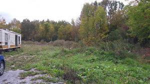HERE IT IS, 1.6 ACRE BUILDING LOT Kawartha Lakes Peterborough Area image 3