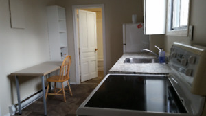 Fully furnished bachelor apartment