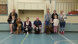 Adult and Puppy Training Classes
